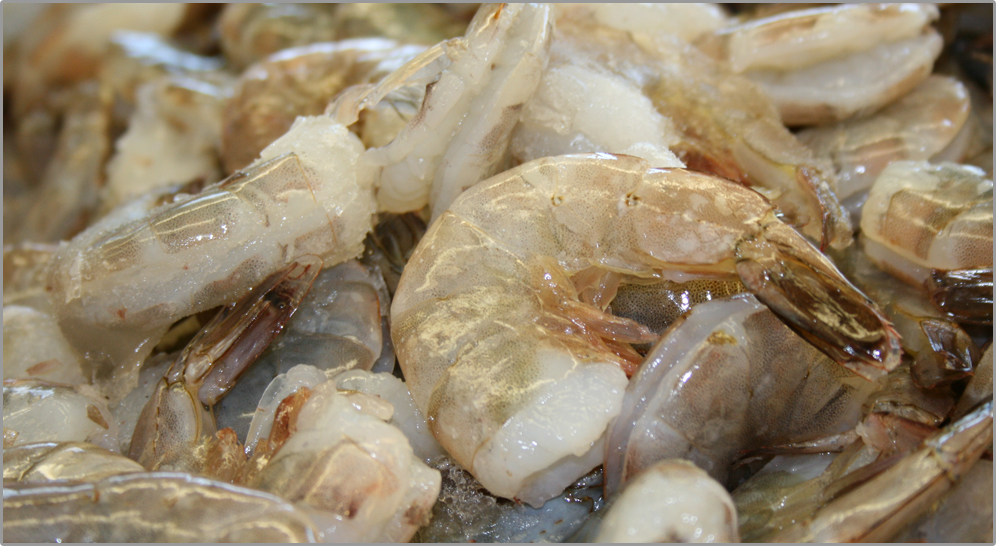 Jumbo Shrimp | | FreshFishHouse.com – Fresh Fish House ...